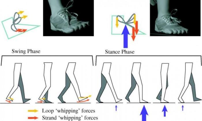 연구팀은 사람이 트레드밀(러닝머신)을 달리는 동안 신발끈이 풀리는 모습을 슈퍼슬로우모션 영상 기법으로 촬영했다. 그러자 완전한 상태의 매듭에 두 개의 강한 힘이 작용하는 것을 포착할 수 있었다. - UC Berkeley 제공
